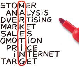 Contributia marketingului la succesul companiei